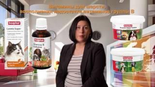 Витамины и кормовые добавки Beaphar