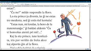 Esperanto with the  Little prince/ Chapter 8