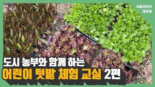 도시 농부와 함께 하는 어린이 텃밭 체험 교실 (2편)썸네일