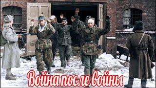 Война после войны. Солдатские мемуары Петра Вшивкова о Великой Отечественной Войне