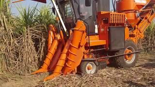 केन हारवेस्टिंग मशीन का उत्तर प्रदेश में पहली बार प्रयोग use of cane harvesters by Sms group