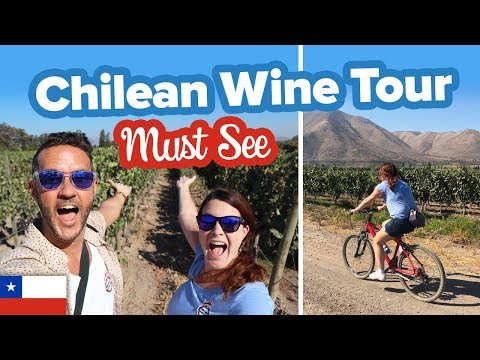 Incredible Wine Tour In Chile 🍷 This Is Maipo Valley 🇨🇱 The Best Wine Tour In Chile.