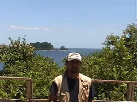 Population census of Coiba howling monkey, Coiba Island, Panama, Pedro Méndez-Carvajal