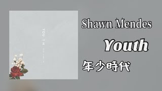 放棄?我做不到 Shawn Mendes - In my blood 《真正的我》中英字幕