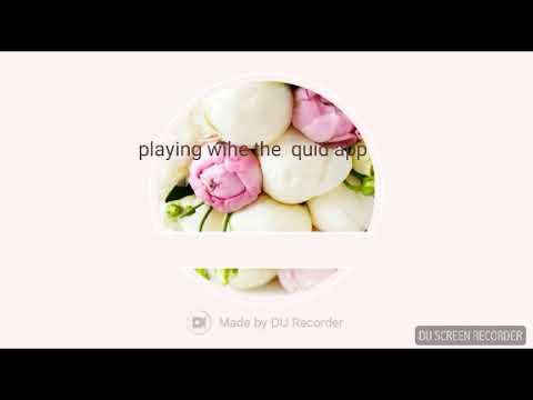 Play With The Quid App