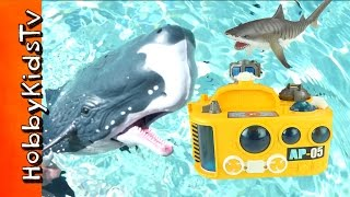 Animal Planet DEEP SEA Discovery Lab! HobbyDad Fun Toy Review and Play HobbyKidsTV