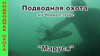 Подводная охота на Черном море с Марусей