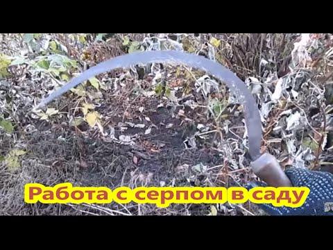 Работа серпом в саду. Жизнь в деревне. Work in the garden of a sickle.  Life in Russia.
