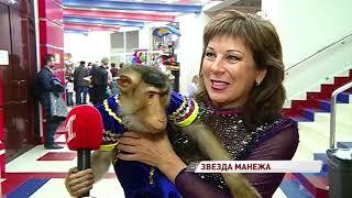 В цирке выступает особенная обезьяна, которую дрессировщик называет вундеркиндом