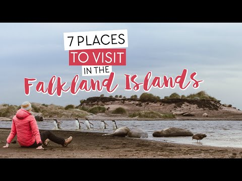7 Places to Visit in the Falkland Islands