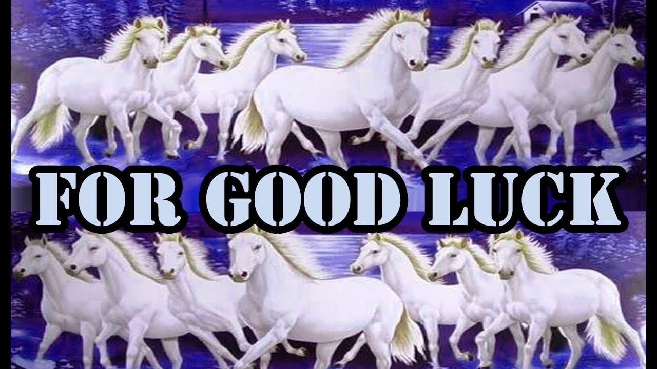 Seven White Horses Running Wallpaper For Good Luck By Astrologer