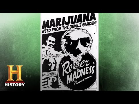 How Did Cannabis Become the World's Most Controversial Plant? | History