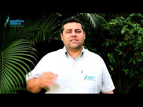 Confira o Convite do Flavio Sandim para 2º Leilão Genética Aditiva Expogenética