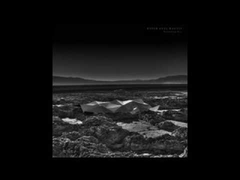 Kangding Ray - Purple Phase [Stroboscopic Artefacts]