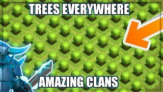 TREE BASES IN CLASH OF CLANS l AMAZING CLANS l TREE PEOPLE, NO WALLS AND QUANTAM WEB