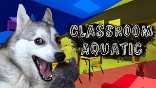 Classroom Aquatic [Indie Dolphin Cheating] IT