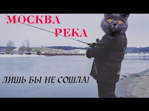Зимний спиннинг на Москва-реке. Ловля щуки и судака на джиг зимой в Подмосковье..