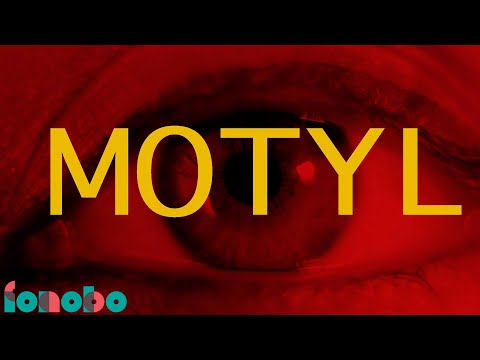 Motyl (Lyric Video)