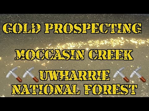 GOLD PROSPECTING MOCCASIN CREEK - NORTH CAROLINA - UWHARRIE NATIONAL FOREST