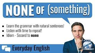 English grammar - None of (something)