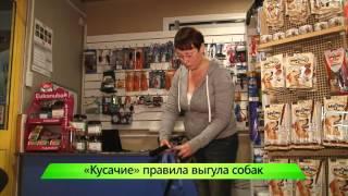 """Новый закон про выгул собак. ИК """"Город"""" 26.09.2014"""