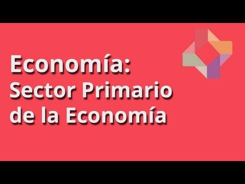 Sector Primario de la Economía