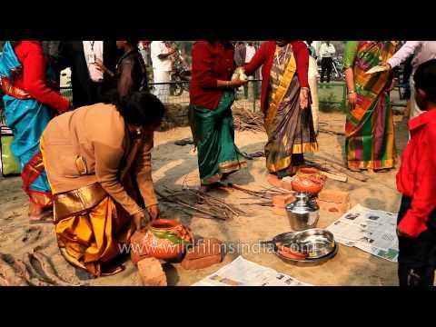 Tamil ladies busy making pongal on Kaannum Pongal