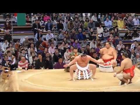 Sumo Wrestling - Fukuoka / Japan @ November 2015