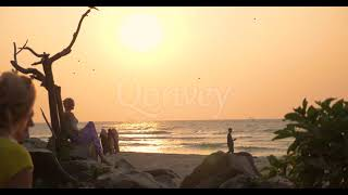 Sunset on beach women sitting birds flying Slow motion | Stock Video | Qonvey