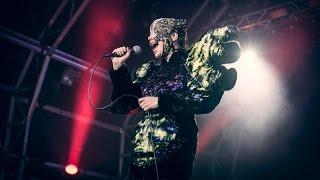 Björk - Wanderlust (Vulnicura Live)