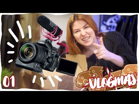 Comparing the Canon 80D to the Sony NEX5-T   VLOGMAS 01