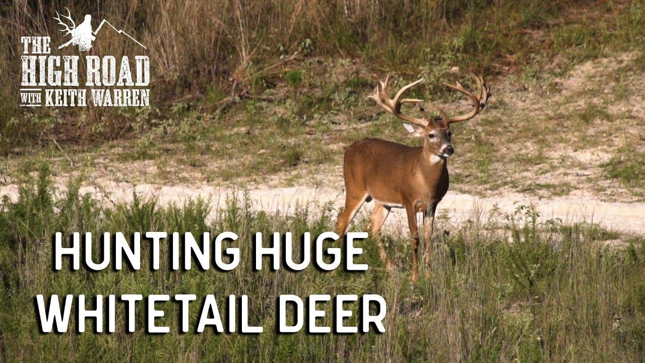 hunting huge whitetail deer management secrets youtube