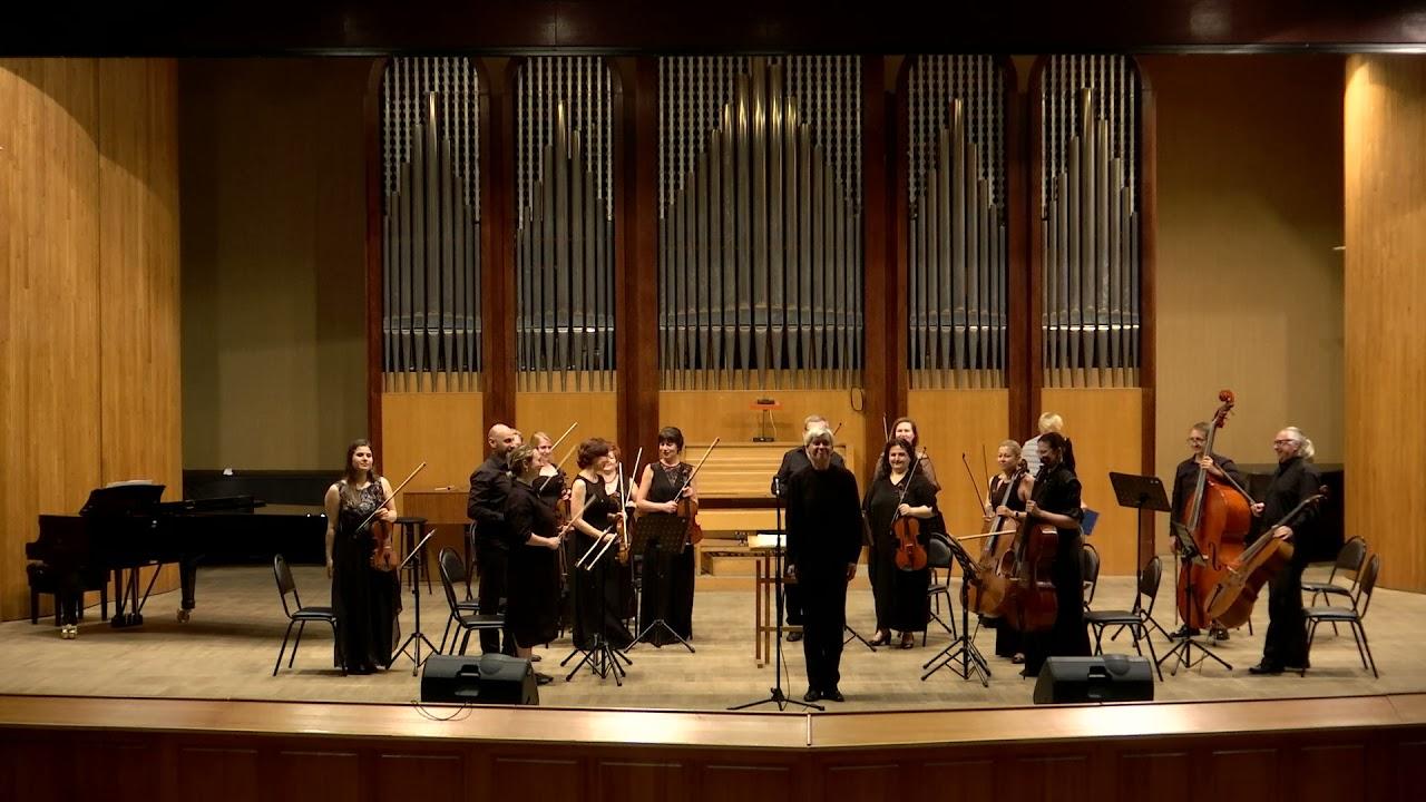 Видео-версия концерта «В королевстве струнных инструментов»