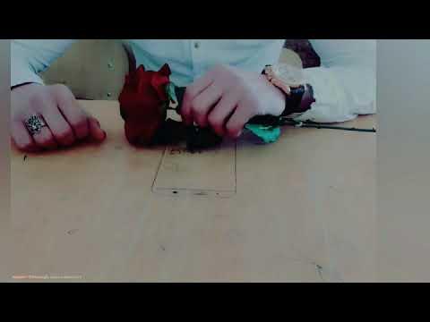 İnisdaqiram üçün vidiyo 59 saniyelik