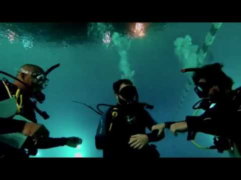 holding hands at hawaii scuba university why not youtube