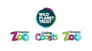 We're Changing! Introducing: Wild Planet Trust