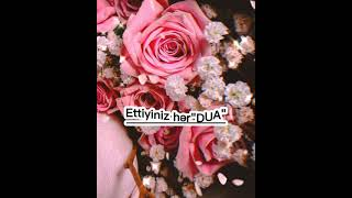 Allah dualarımızı Qəbul etsin🙏❤🕋