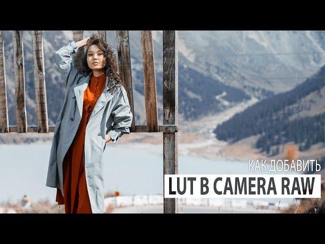 Как добавить LUTы в Adobe Camera RAW