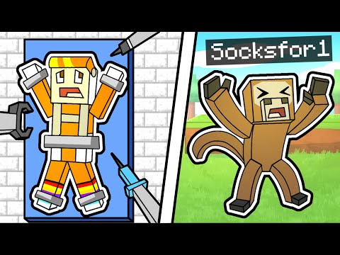 RETURN TO MONKE ON THE SOCK SMP (minecraft) - Socksfor1