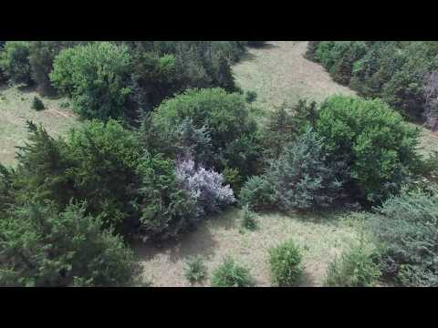 Polk County, Nebraska Recreational/Grassland For Sale offered by Moravec Auction Co LLC