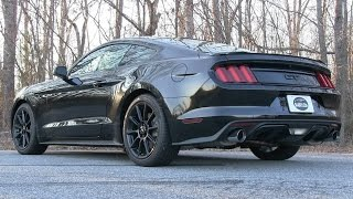 Pure Sound: 2016 Ford Mustang GT w/ Kooks Headers & Borla Exhaust - Start Up, Revs, Acceleration