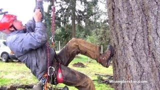 Climbing Trees With A Rope