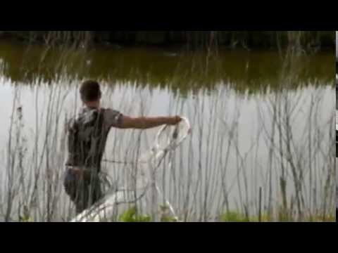 сетка клева рыбы в