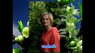 Дарите женщинам цветы   слайдшоу(Поздравление моих ПЧ на Лиру с днём 8 Марта., 2014-03-07T14:04:03.000Z)