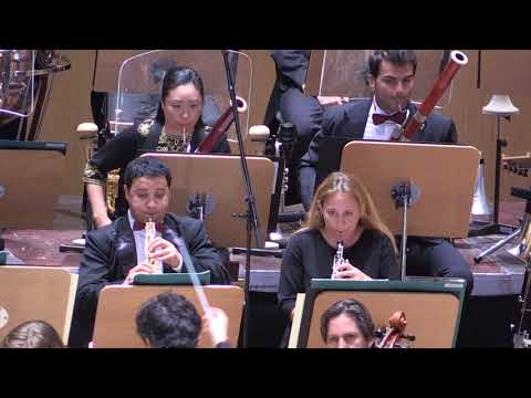 Mozart Piano Concerto No 20, 2  Movement
