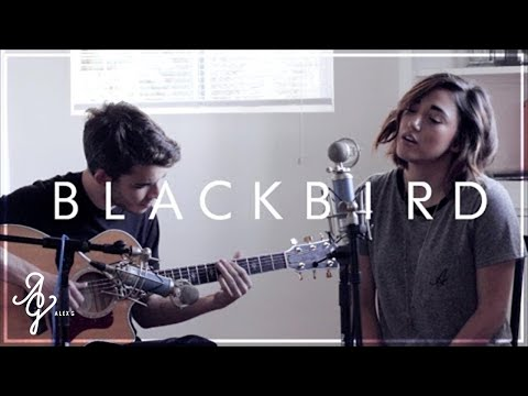 Blackbird Beatles  ALEX G  Dining Room Sessions