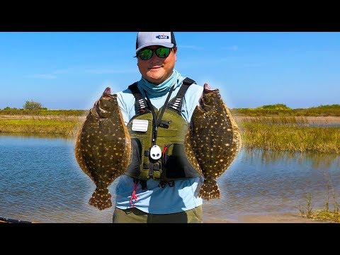 *INSANE* Flounder Are Running Thick! *EASY* Flounder Limit