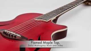 Nashlyn Acoustic Guitar - Red - By Giannini Guitars