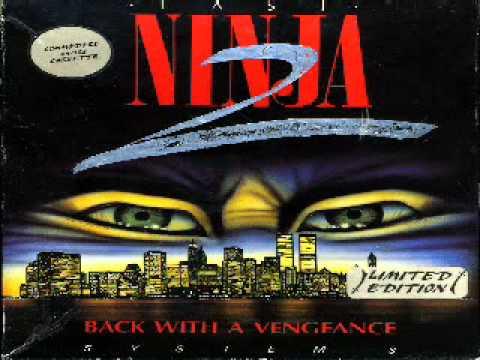 Last Ninja 2: Central park (metal version)