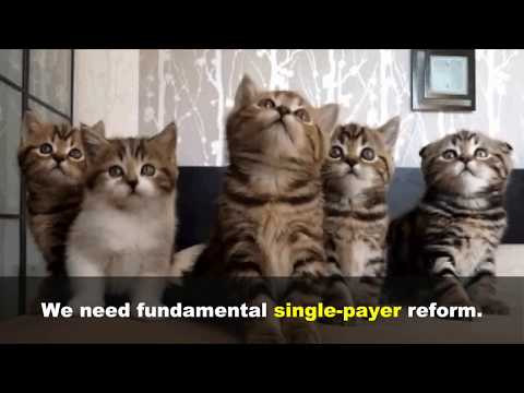 American vs. European 'private health insurance' ... explained using cats
